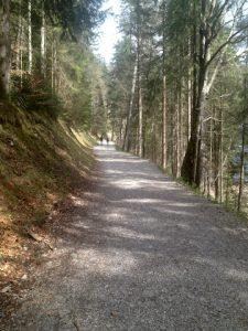 Eibsee Wanderweg