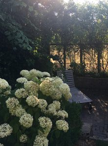 Het Dijkhuisje - Garten mit Sonnenliege