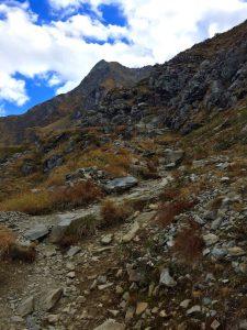 Wanderpfad zum Seeblingersee im Montafon