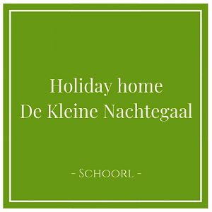 Holiday home De Kleine Nachtegaal, Schoorl, Holland