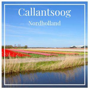 Callantsoog, Nordholland, CharmingFamilyEscapes
