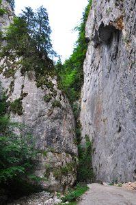 Siebenbürgen - Zarnesti Schlucht