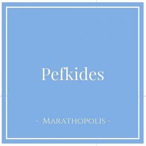 Pefkides, Marathopolis, Peloponnes, Griechenland auf Charming Family Escapes