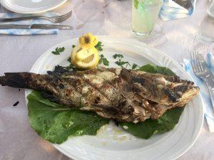Frischer Fisch im Strandrestaurant Belvedere, Peloponnes, Griechenland