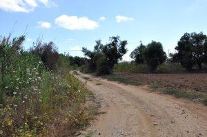 Weg zu den White Villas, Griechenland