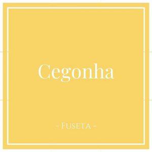 Cegonha, Fuseta, Moncarapacho, Portugal auf Charming Family Escapes