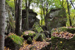 Auf dem Müllerthal Trail, Luxemburg