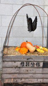 Dekoration zu Halloween in Clervaux