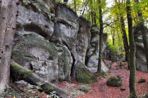 Unterwegs auf dem Müllerthal Trail in Luxemburg