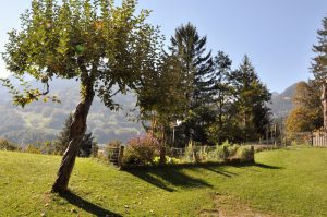 Wandern im Montafon - Gemüsegarten