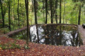 Wasserbecken oberhalb der Kalktuffquelle, Luxemburg