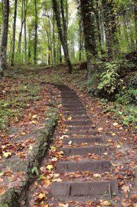 Weg zur Kalktuffquelle, Luxemburg