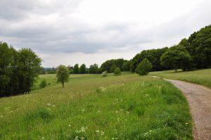 Wandern durch Wiesen und Wälder in Beyenburg