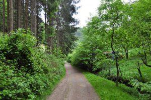 Wandern in Beyenburg