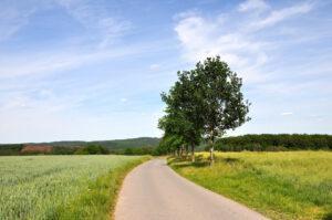 Spazierweg in Solingen-Gräfrath