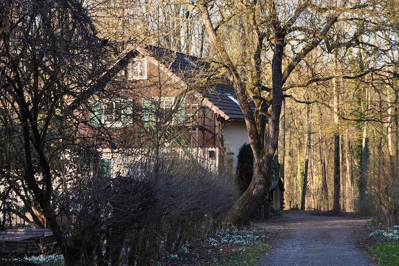 Waldschule, Solingen