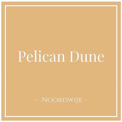 Pelican Dune, Noordwijk, Niederlande