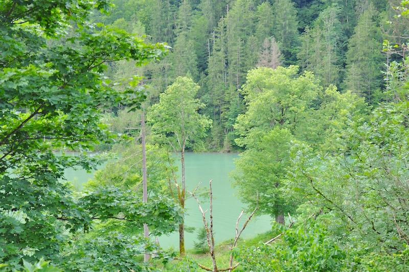 Königssee - Blick vom Cafe Malerwinkl